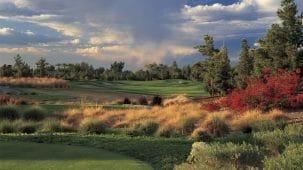 Golf & Travel International Steven L Walker
