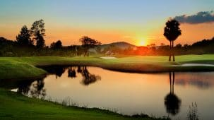 Golfasian