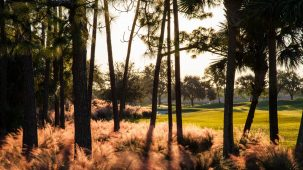 Brian Oar - Fairways Photography 2012