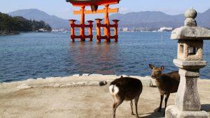 ©Hiroshima Prefecture ©JNTO4