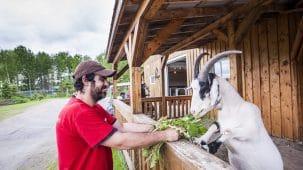 Refuge Pageau - Hugo Lacroix / Tourisme Abitibi-Témiscamingue